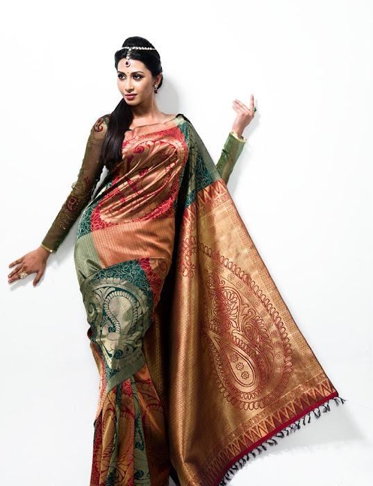 gayathiri wonderful saree ad collections 2012