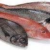 Διατροφή: Τρώτε πολλά ψάρια