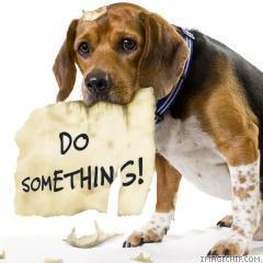 Do Something...