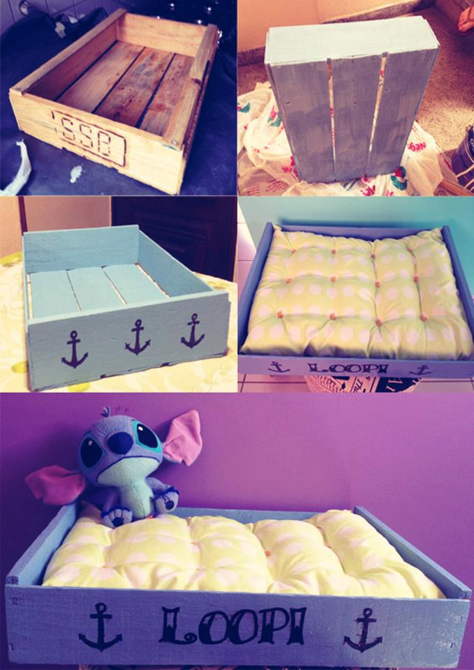 Casas para seu pet fa a voc mesmo casa de colorir - Casas embargadas la caixa ...