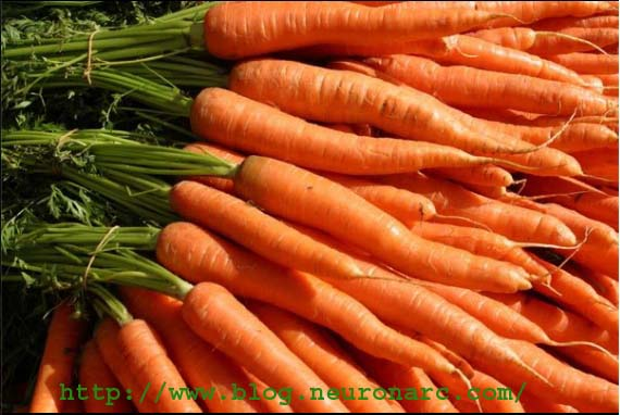 image16+copy Carrots nutritional benefits