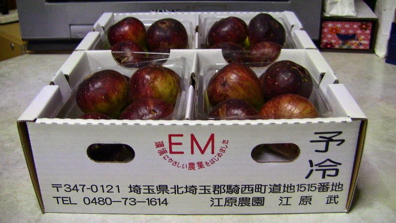 Japan Fig Farm