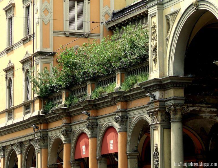 Bologna 2010/2