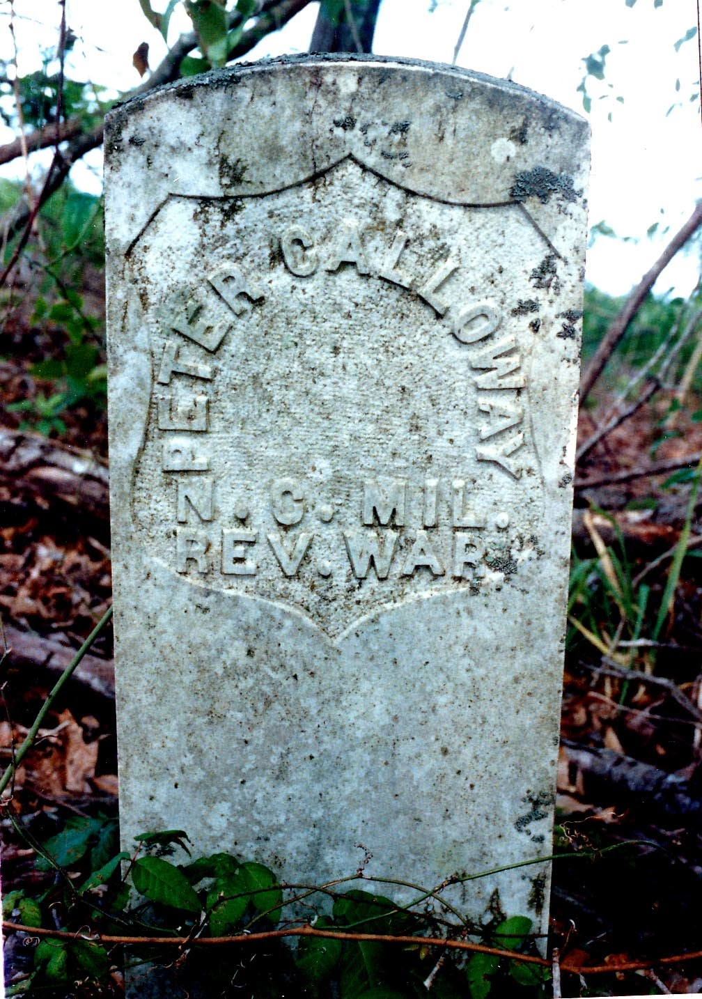 Among His Close Friends Were Fellow Veterans Of The Revolutionary War John Shine And Peter Calloway Both Whom Died While Visiting Blackshear Home