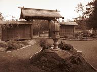 Japanese garden in Esquimalt BC
