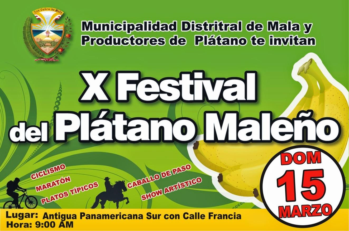 X FESTIVAL DEL PLÁTANO MALEÑO