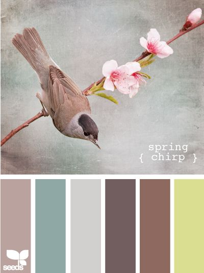 http://design-seeds.com/index.php/home/entry/spring-chirp
