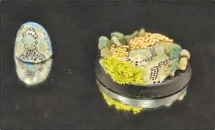 Peanas con escamas de reptil