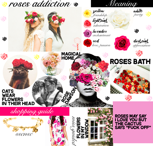 Roses colors meanings