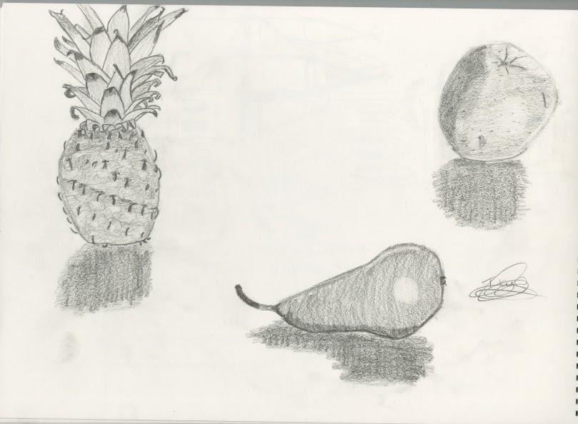 Contour Line Drawing Fruit : Observational drawing still life fruit