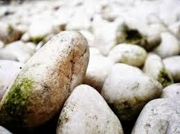 batu sungai untuk bertungku