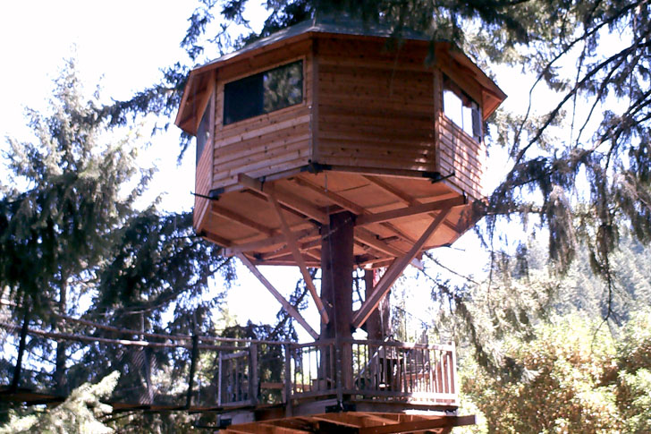 Pictures of tree houses and play houses from around the for Building a house in oregon