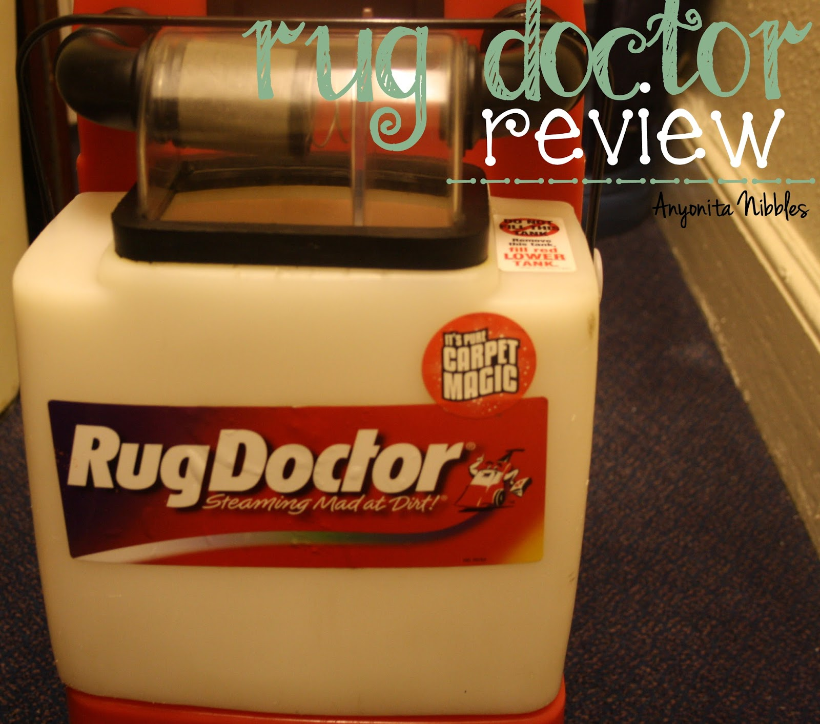 Rug Doctor Review From Www.anyonita Nibbles.com