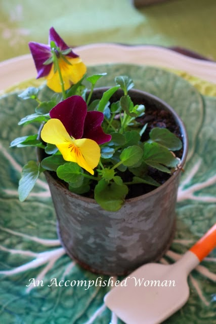 Pansy Garden Table