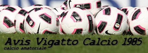 Avis Vigatto Calcio 1985