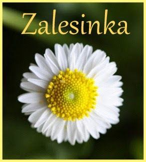 http://zalesinek.blogspot.com/