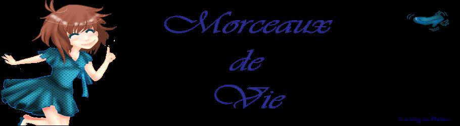 Morceaux de vie -Le blog de Melow