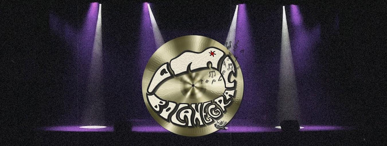 Asociación Músico Cultural Bocanegra