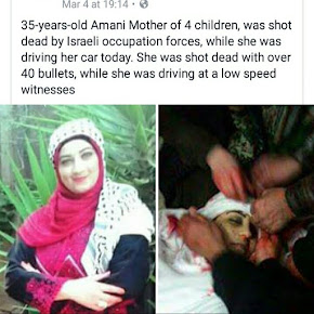 just a 35 year old mom, a  f****** Palestinian Muslim. Nothing to see here. Move along. Move along.