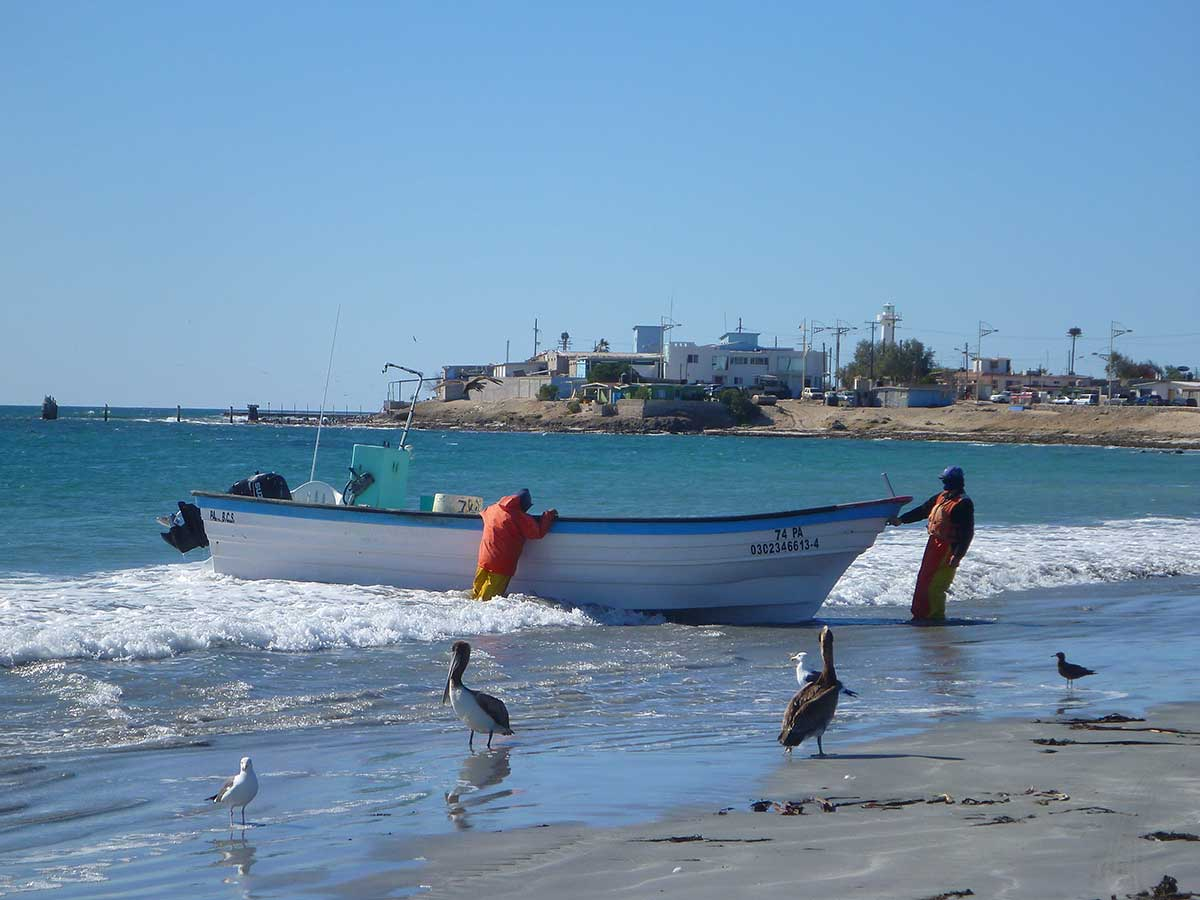 mexican panga fishing boats for sale panga boats california