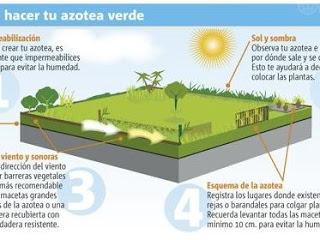 Materiales para techos verdes