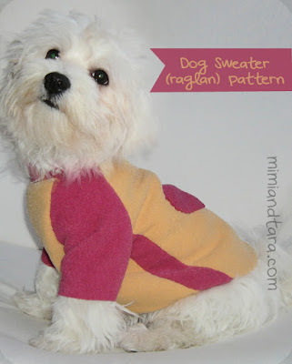 dog sweater patterns ranglan