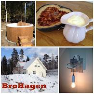 Gillar du inredning? Kolla in vår blogg BroHagen som handlar om heminredning och trädgård.