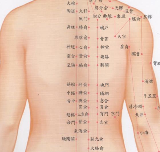 風清雲學苑: 背部指壓及刮痧油 ... : 中1 問題 : すべての講義