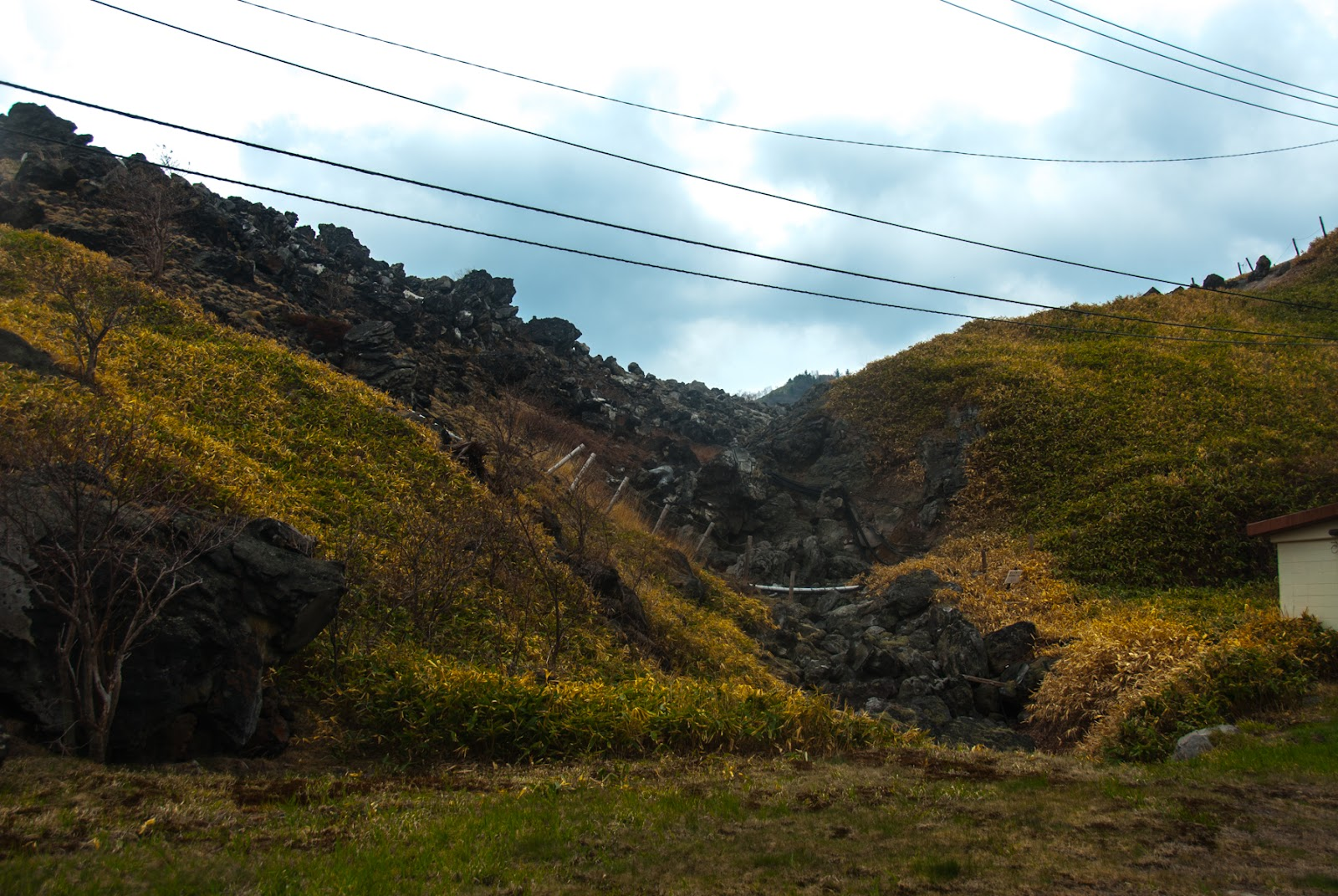 岩と草と電柱