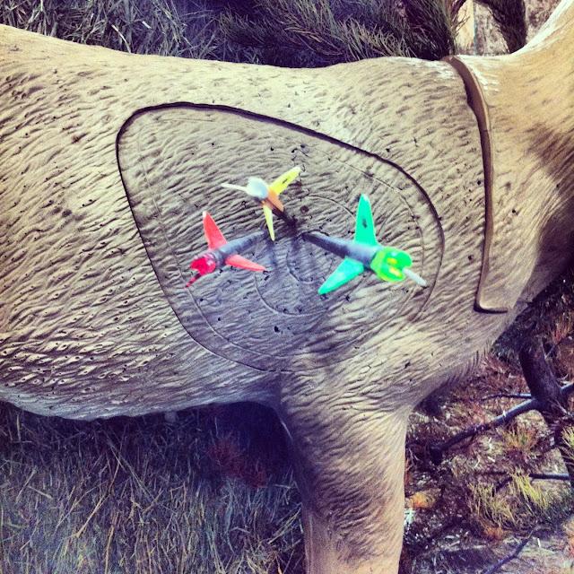 Archery 3D Shoot Idaho
