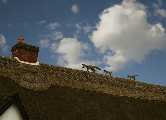 Fox and Cubs Thatch Roof - Photograph by Tim Irving