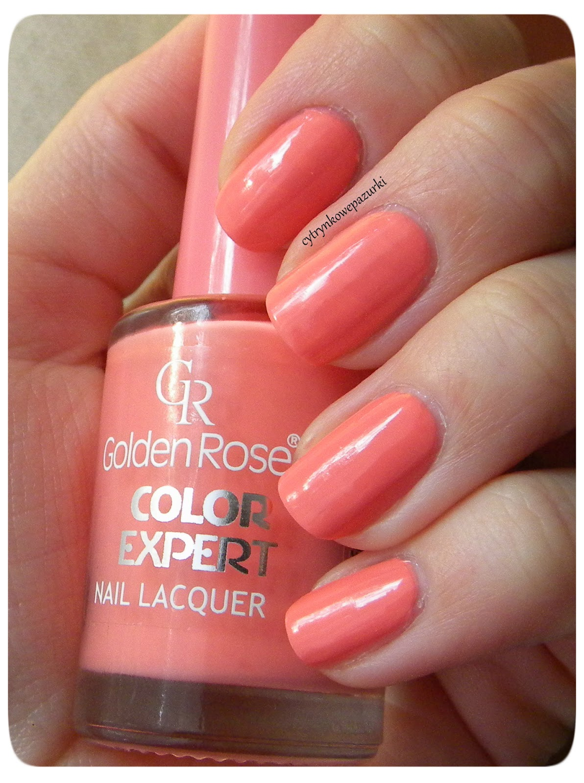 Golden Rose Color Expert 22 i Life 09