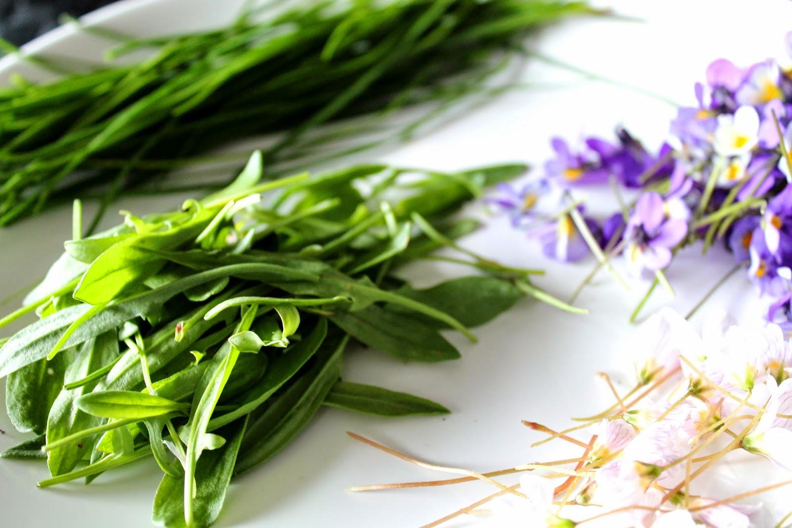 Chive, violets, wood sorrel flowers and sorrel | Alinan kotona blog