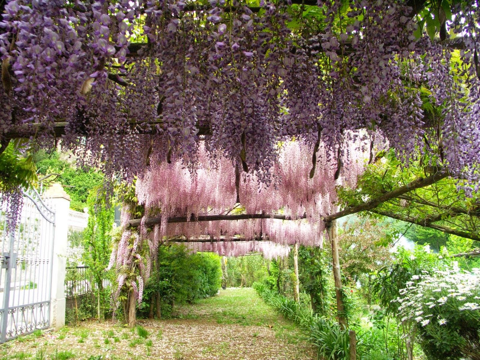 Il giardino segreto dell 39 anima di tramonti e la for Creare angoli di giardino