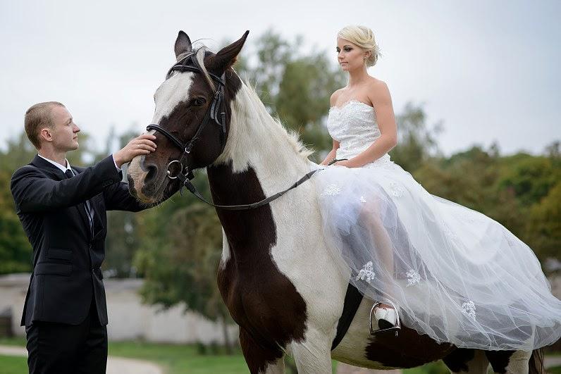 vestuvių nuotraukos su arkliais