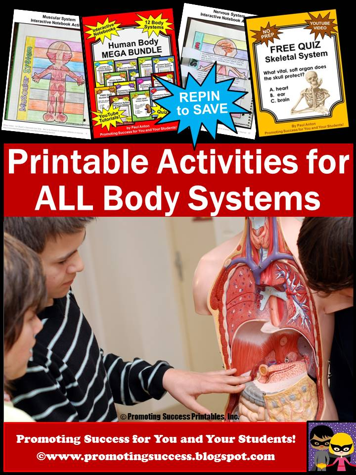 Asaiutui Human Body Systems Quiz Interactive Notebooks Videos And