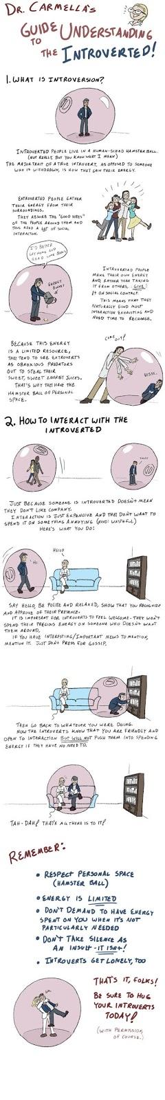 Anleitung: Wie verstehe ich introvertierte