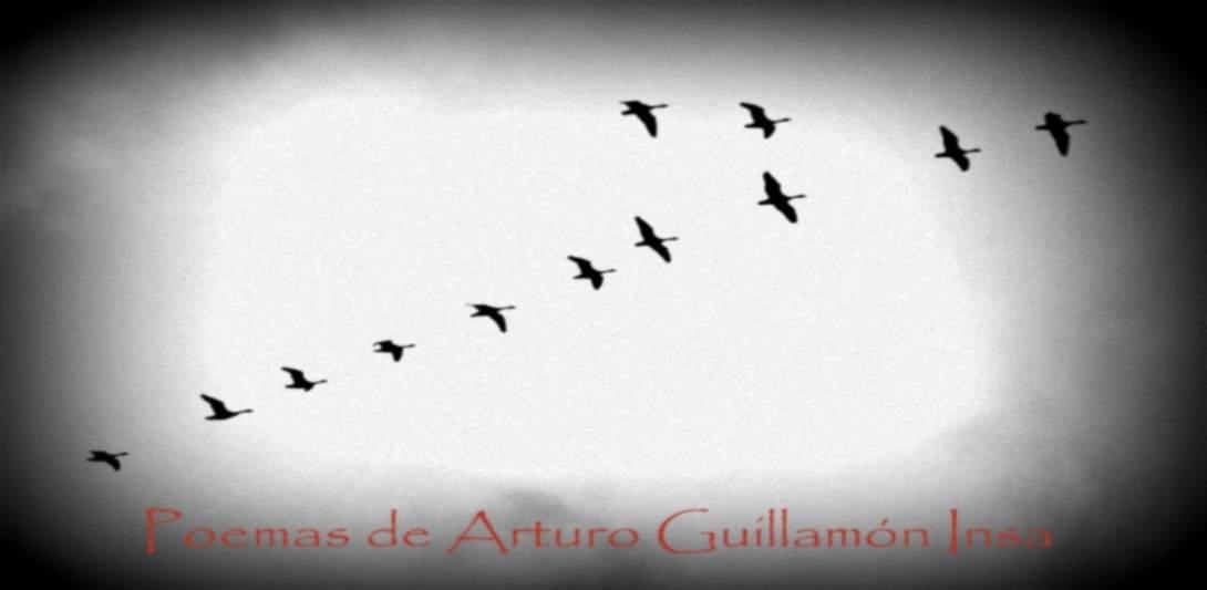Poemas de Arturo Guillamón Insa