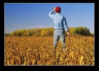 Οι νέοι εκδηλώνουν ενδιαφέρον για την αγροτική παραγωγή