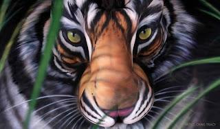 mulher, pintura corporal, tigre, tatuagem, pelada