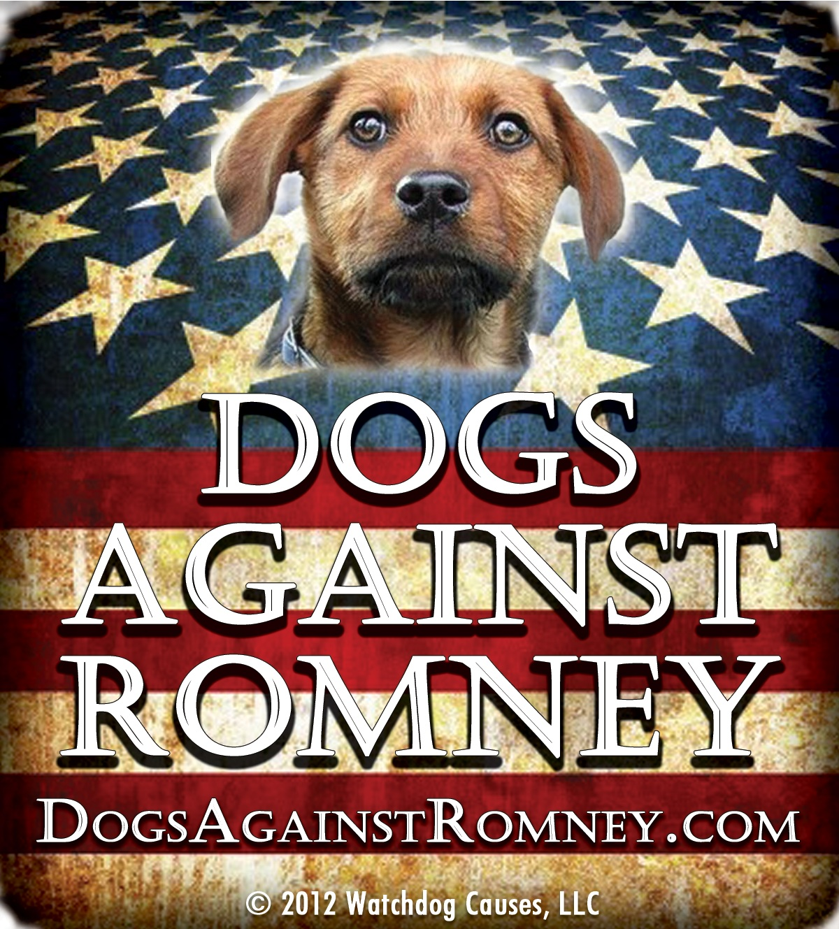 Mitt Romneys dog