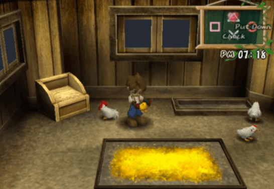 harvest moon wonderful life chickens