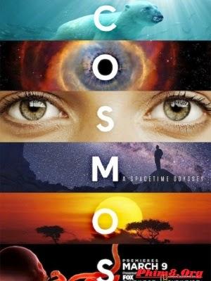Vũ Trụ Kỳ Diệu Phần 1 - Cosmos: A SpaceTime Odyssey Season 1 (2014)