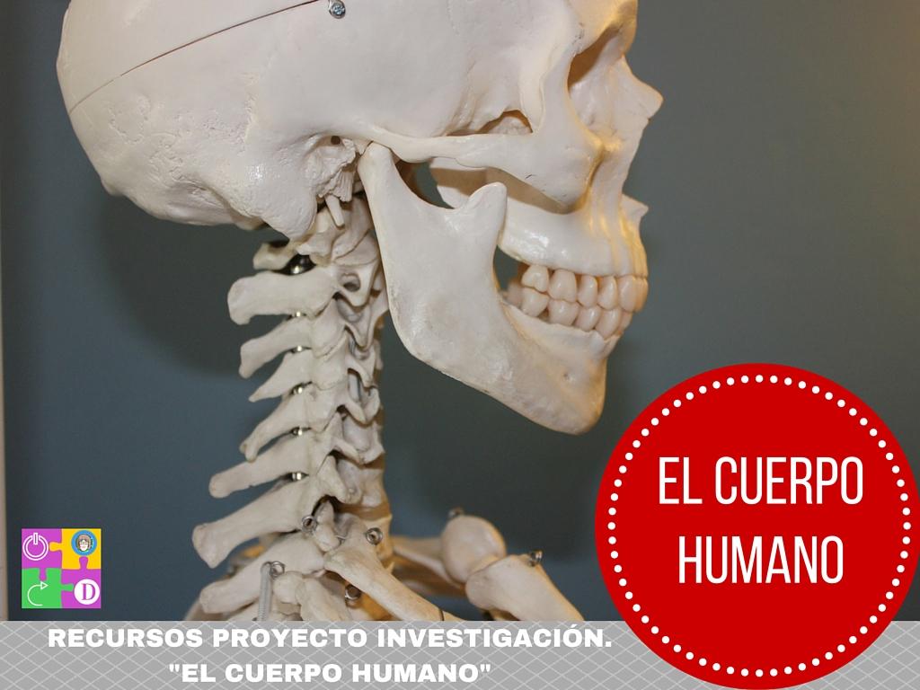 """Recursos """"Cuerpo Humano"""""""