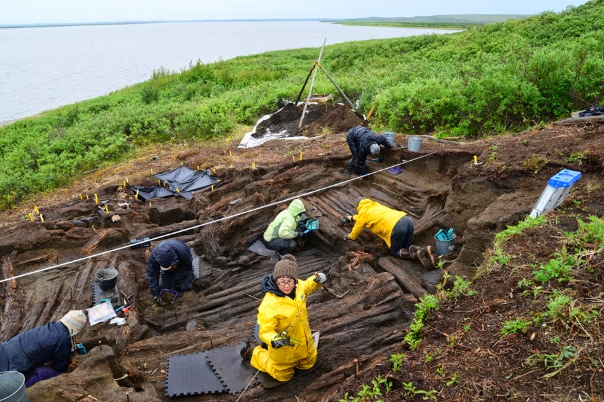 Complete Inuvialuit driftwood house found in Canadian Arctic