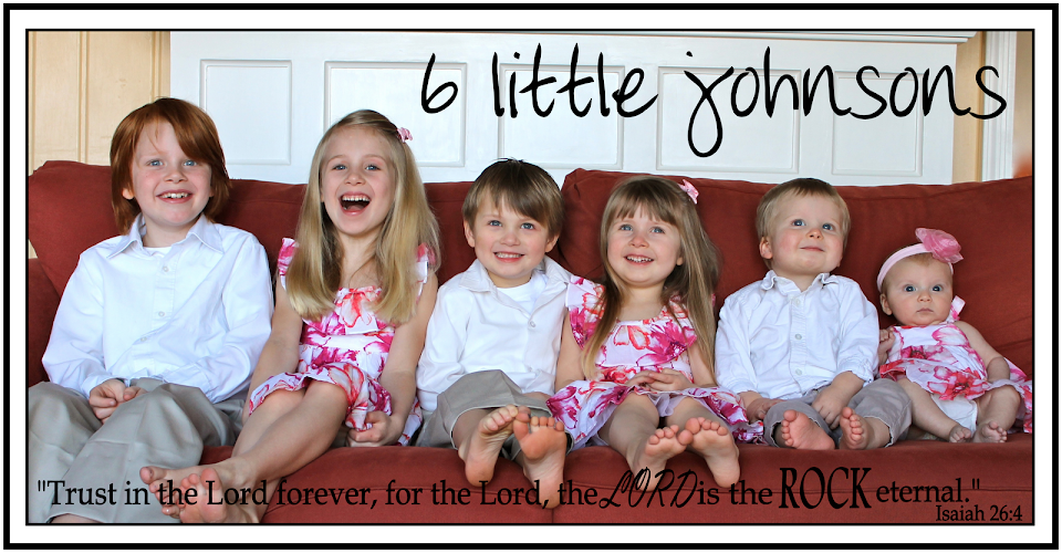 6 Little Johnsons