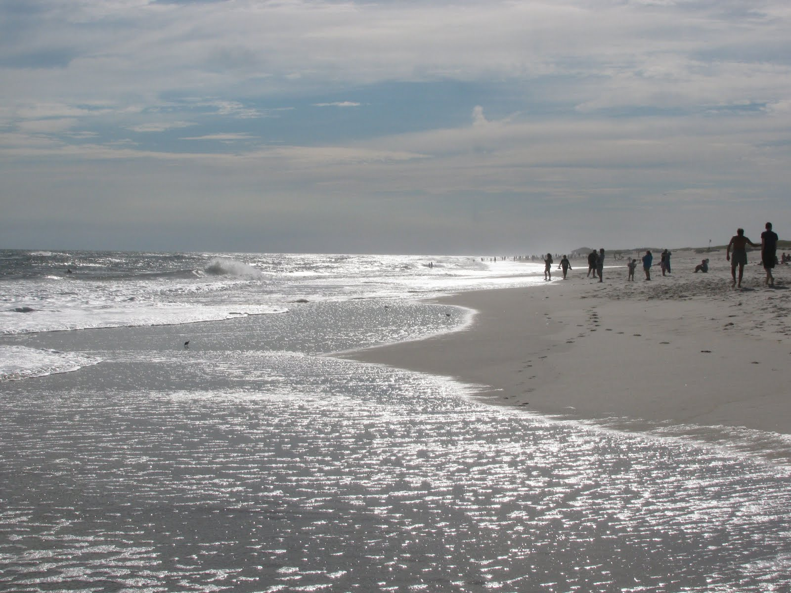 Long Island Beaches Robert Moses Closed Today