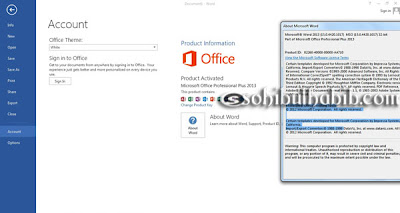 Microsoft Office Professional Plus 2013 Full Activator