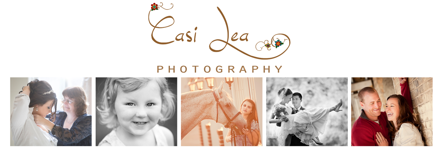 Casi Lea Photography .:. Green Bay Wedding Photographer, Portrait, Horse, Children, Seniors, Models