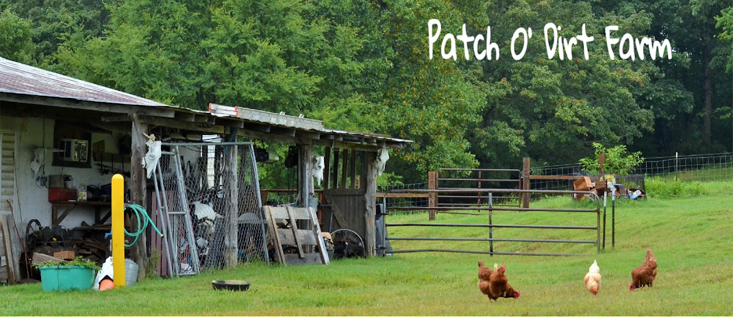 Patch O' Dirt Farm